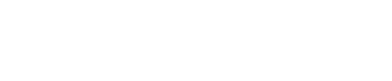 fznl-01
